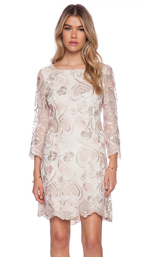 Deco Embroidered Mesh Mini Dress