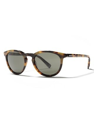 Banana Republic Johnny Sunglasses - Havana