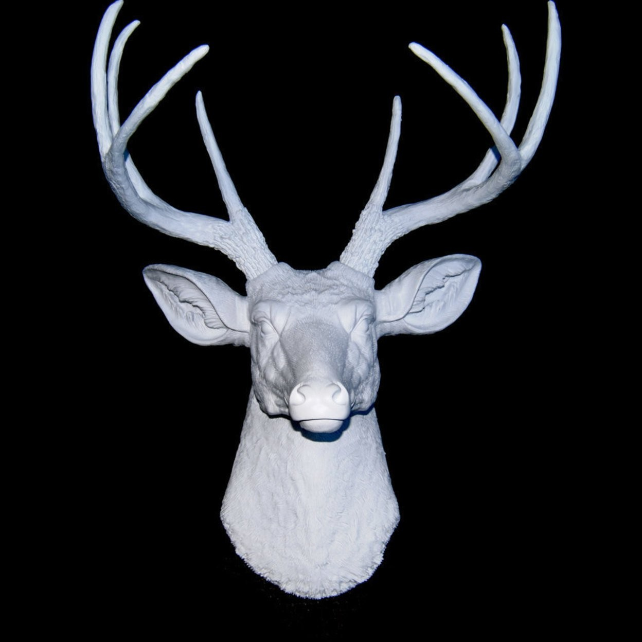 deer antler decor