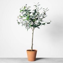 """32"""""""" Faux Olive Branch Plant - Hearth & Hand with Magnolia, Size: 32"""""""", Green Brown 
