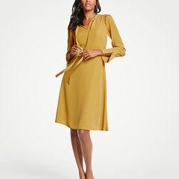 Ruffle Sleeve Flare Dress | Ann Taylor (US)