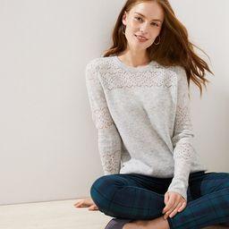 Petite Lacy Pointelle Sweater | LOFT | LOFT
