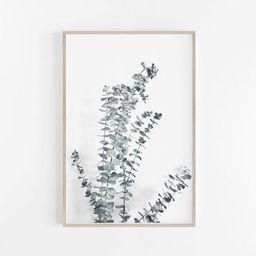 Eucalyptus Print,Art Print,Large Wall Art,Botanical Print,Digital Download,Print Wall Art,Poster,Pri   Etsy (US)