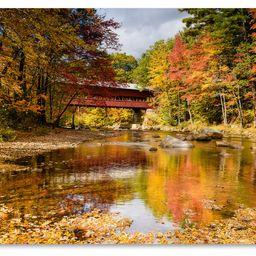 https://www.houzz.com/product/83191689-michael-blanchette-photography-along-swift-river-canvas-art-1   Houzz