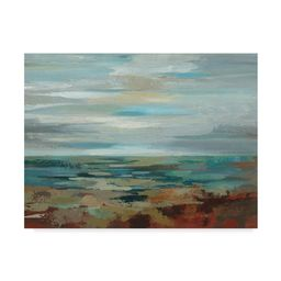 Silvia Vassileva 'Marine Layer' Canvas Art - Black | Overstock