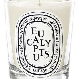 diptyque Eucalyptus Candle | Nordstrom