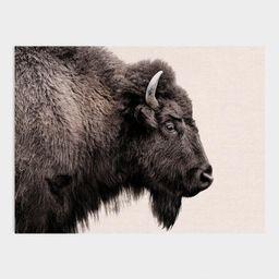 Buffalo Profile Canvas Wall Art | World Market