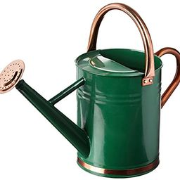 Gardman 8327 Hunter Green Galvanized Steel Watering Can with Copper Accents, 1-Gallon | Amazon (US)