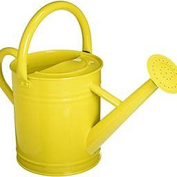 Gardener's Select AW3003P6LZ Watering Can, Lemon Yellow, 3.5 L | Amazon (US)