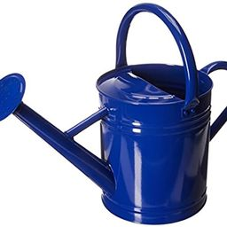 Gardener's Select Watering Can, Blue, 3.5 L-(AW3003P6DB) | Amazon (US)