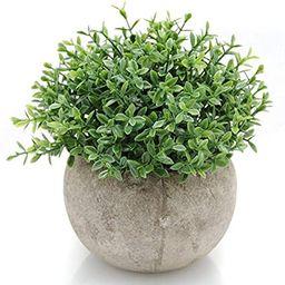 Velener Mini Plastic Artificial Plants Benn Grass in Pot for Home Decor (Green) | Amazon (US)
