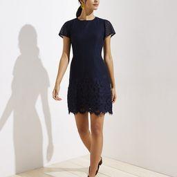 Petite Lace Shift Dress   LOFT   LOFT