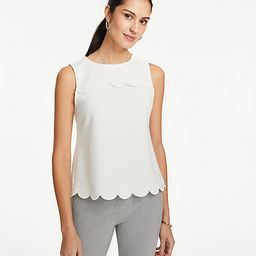 Scalloped Shell | Ann Taylor (US)