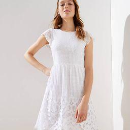 Lace Dot Dress | LOFT