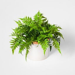 """15"""" Potted Artificial Boston Fern Green - Threshold™ 