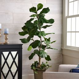 5' Faux Fiddle Leaf Tree in Starter Pot by Valerie — QVC.com | QVC