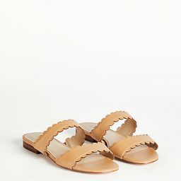 Jean Scalloped Flat Leather Sandals | Ann Taylor | Ann Taylor (US)