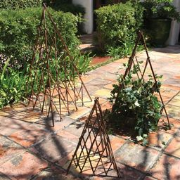 Elkins Natural Pyramid Trellis | Wayfair North America