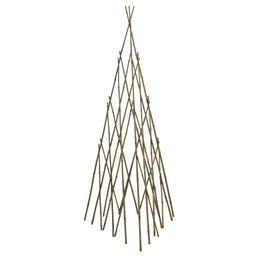 Wood Obelisk Trellis | Wayfair North America