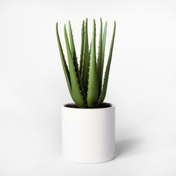 """12.5"""" x 5"""" Artificial Aloe Plant In Pot Green/White - Project 62™   Target"""