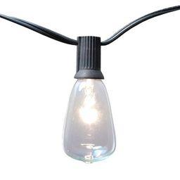10 Lights Edison Style Electric String Lights - Lumabase | Target