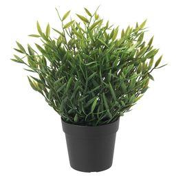 FEJKA Artificial potted plant - indoor/outdoor House bamboo - IKEA   IKEA (DE)