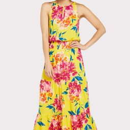 Catalina Maxi Dress | Evereve