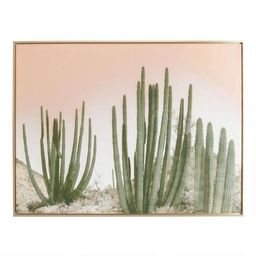 Cactus with Gold Frame | World Market