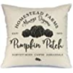 AENEY Fall Pillow Cover 18x18 inch Pumpkin Patch Throw Pillow for Fall Decor Farmhouse Fall Decor... | Amazon (US)
