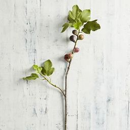 Faux Fig Branch   Pottery Barn (US)