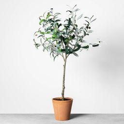 Faux Olive Branch Plant - Hearth & Hand™ with Magnolia | Target