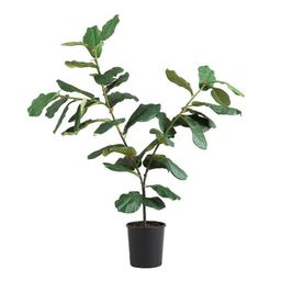 Faux Fiddle-Leaf Fig Plant   World Market