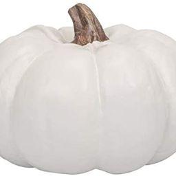 Elanze Designs Classic White 6 inch Resin Harvest Decorative Pumpkin | Amazon (US)