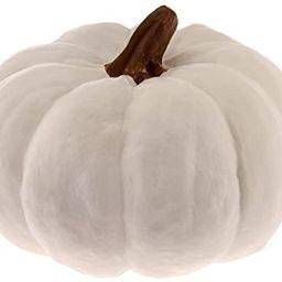 Boston International Pumpkin Decorative Table Accent, Small, White | Amazon (US)