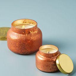Mini Capri Blue Pumpkin Clove Jar Candle   Anthropologie (US)