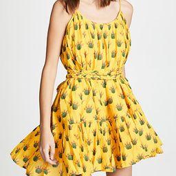 Nala Dress | Shopbop