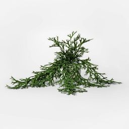 """18"""" x 5.5"""" Artificial Potted Trailing Fern Green - Threshold™ 