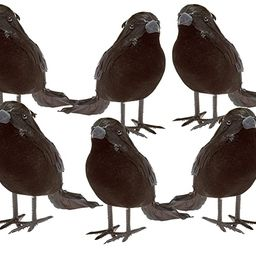 Prextex Halloween Black Feathered Small Crows – 6 Pc Black Birds Ravens Props Décor Halloween ... | Amazon (US)