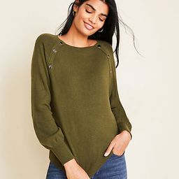 Snap Trim Sweater   Ann Taylor   Ann Taylor (US)