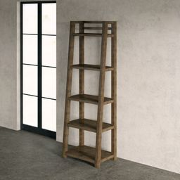 Bridgnorth Keeble Leaning Ladder Bookcase | Wayfair North America