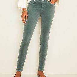 High Rise 5-Pocket Velvet Pants   Ann Taylor   Ann Taylor (US)