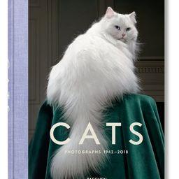 'Walter Chandoha Cats: Photographs 1942-2018' Book | Nordstrom | Nordstrom