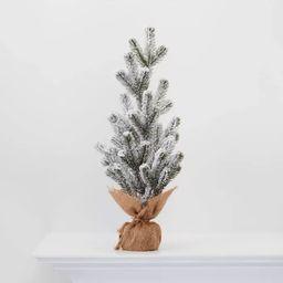 "18"" Burlap Wrapped Plastic Flocked Tree - Wondershop™ | Target"