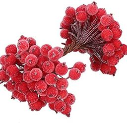 BBTO 100 Wired Stems of Artificial Holly Berries Artificial Flower Decor 200 Pack 12 mm Mini Chri... | Amazon (US)