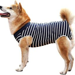 Dog Recovery Suit Abdominal Wound Protector Puppy Medical Surgical Clothes Post-Operative Vest Pe... | Amazon (US)