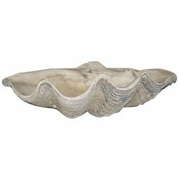 House Parts Large Clam Shell | Hayneedle
