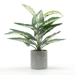"Velener 15"" Artificial Potted Green Leaf Plant in Pot for Desk Top Decor (Taro Leaf) | Amazon (US)"