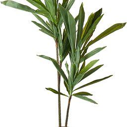 Nearly Natural 6585 Dracaena Decorative Silk Plant, 48-Inch, Green | Amazon (US)