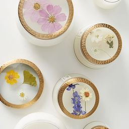Floral Press Candle | Anthropologie (US)
