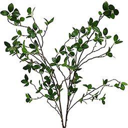 Htmeing Artificial Eucalytus Green Branches Faux Ficus Twig Home Office Shop Decoration (2PCS)   Amazon (US)